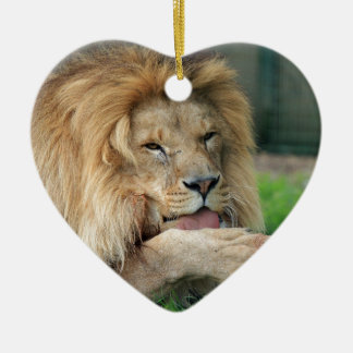 Lion Safari Cute African Classy Ceramic Ornament