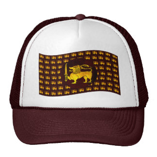 Lion Sri Lanka hat