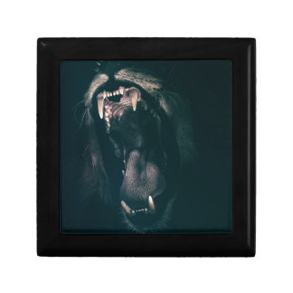 Lion Teeth Roar Fear Angry Roaring Strength Gift Box