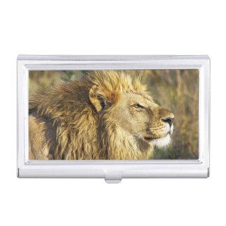 Lion Wild Animal Wildlife Safari Business Card Case
