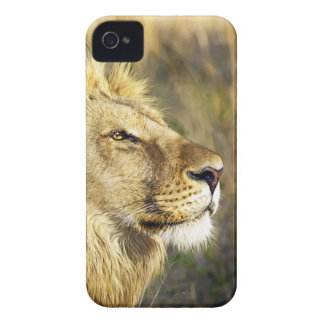 Lion Wild Animal Wildlife Safari Case-Mate iPhone 4 Case