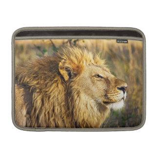 Lion Wild Animal Wildlife Safari MacBook Sleeve