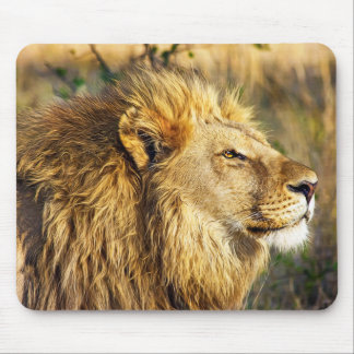 Lion Wild Animal Wildlife Safari Mouse Pad