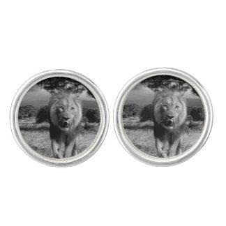 Lion Wildcat Cufflinks