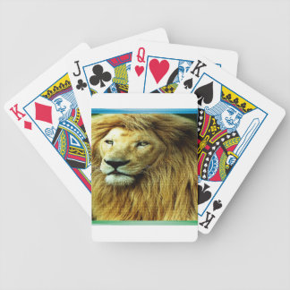 Lion With Rainbow Border Bicycle Playing Cards