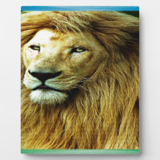 Lion With Rainbow Border Plaque