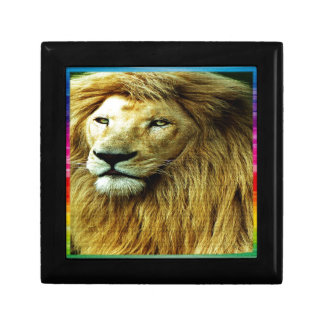 Lion With Rainbow Border Trinket Box