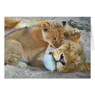 Lioness and cub card