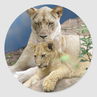 Lioness and Cub Sticker