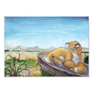 Lioness lying on rock in savannah art photo