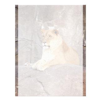 Lioness on the Rocks Letterhead Template