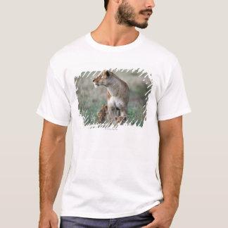 Lioness (Panthera leo) and cubs, Masai Mara T-Shirt