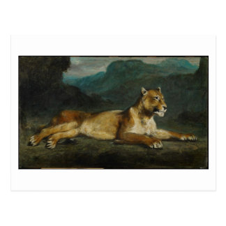 Lioness reclining, c.1855 (oil on panel) postcard