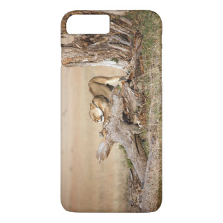 Lioness stretching iPhone 7 plus case