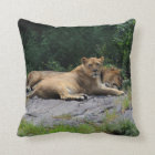 Lioness with Sleeping Lion Photo Throw Pillow