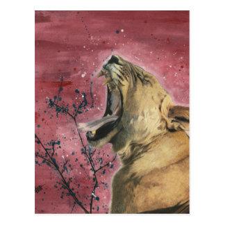 Lioness Yawn Postcard