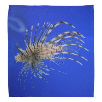 Lionfish Bandana