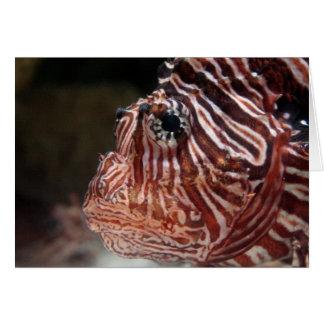 Lionfish Card
