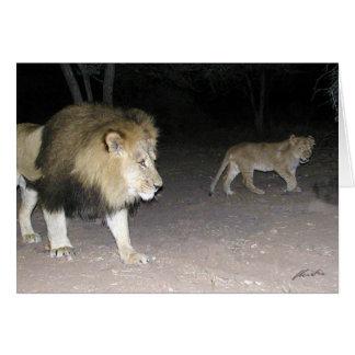 (Lions Clubs) Lion & Cub (Etosha, Namibia) Card