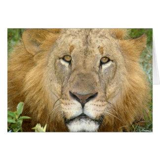 (Lions Clubs) Lion Face (Lake Nakuru, Kenya) Card