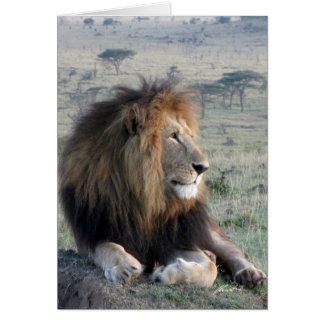 (Lions Clubs) Lion King (Olare Motorogi, Kenya) Card
