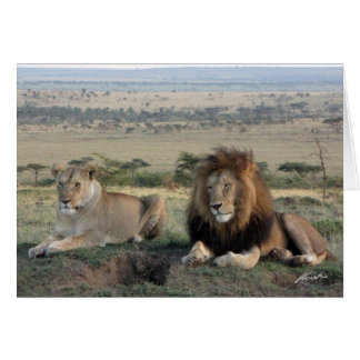 (Lions Clubs) Lion Pair (Olare Motorogi, Kenya) Card
