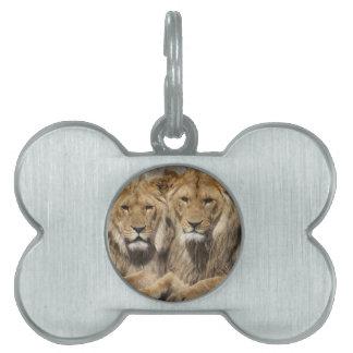 Lions Pet ID Tags