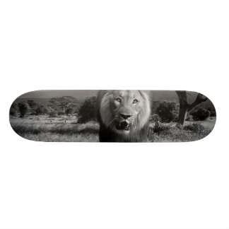 Lions Wildcat Skate Boards
