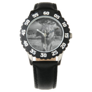 Lions Wildcat Wrist Watch