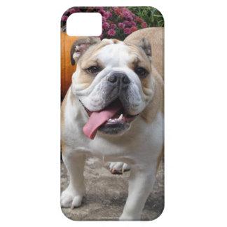 L'iPhone drôle mignon 5 de bouledogue anglais couv Coque iPhone 5