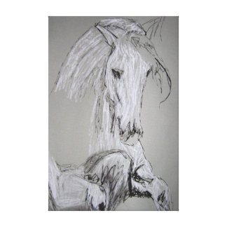 Lipizzaner Stretched Canvas Prints