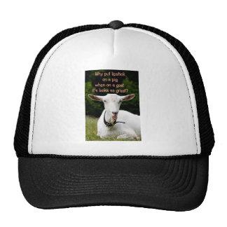 Lipstick on a goat trucker hat
