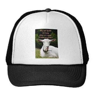 Lipstik on a goat trucker hat