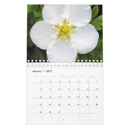 L'Irlande dans le calendrier de fleur