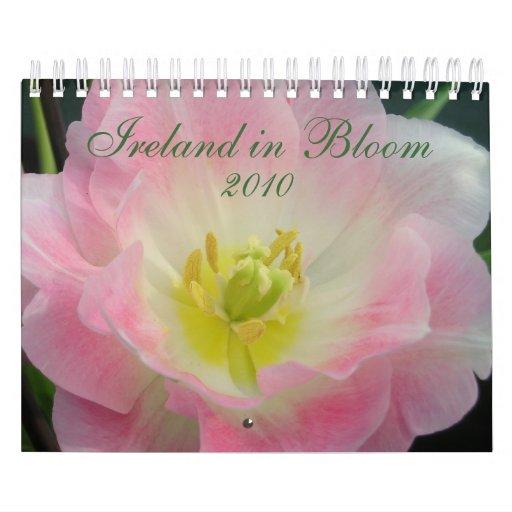 L'Irlande dans le calendrier de la fleur 2010