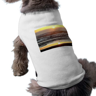 Lit Waters Dog Clothes