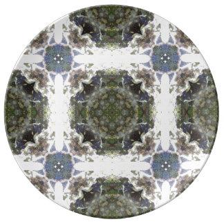 Lithia Park River light Porcelain Plate