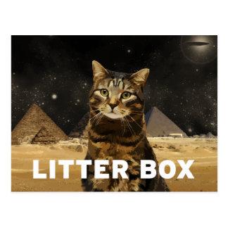 Litter Box Postcard