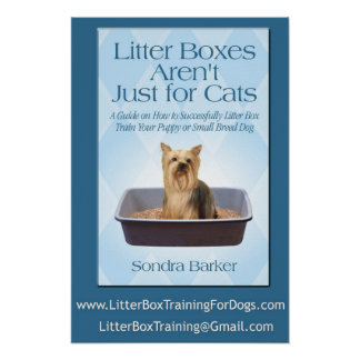 Litter Boxes Arent Just For cats Poster