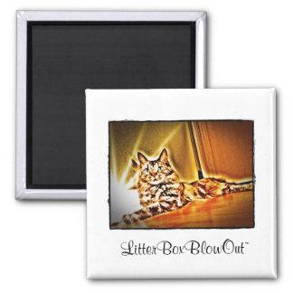 LitterBoxBlowOut Magnet