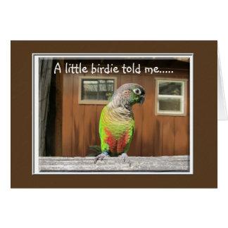 Little Birdie Card