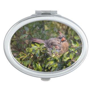 Little Birdie in the Rain Mirror For Makeup