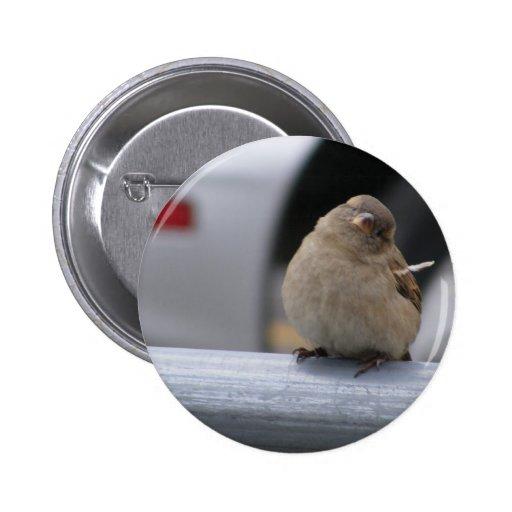 Little Birdy Button