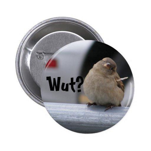 """Little Birdy Button: """"Wut?"""""""