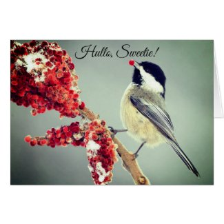 Little Birdy Christmas Card