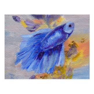 Little Blue Betta Fish Postcard