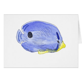 Little Blue Fish Cards