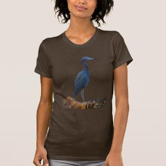 Little Blue Heron Tee Shirt