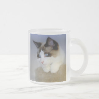 Little Boy Blue Frosted Mug