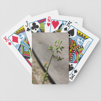 Little Bug, Little Flower Bicycle Playing Cards